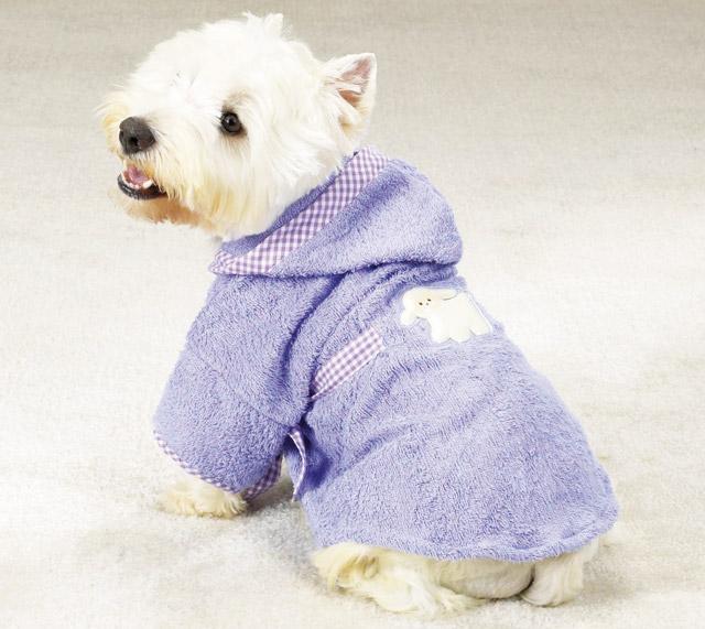 Cani bellezza - Bagno cane dopo antipulci ...