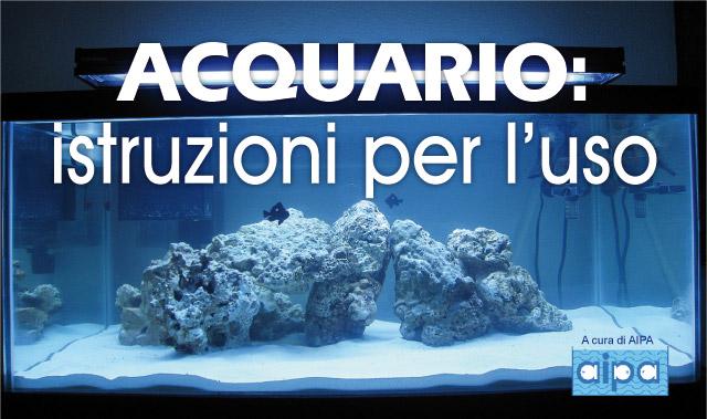 Acquario istruzioni per l 39 uso for Oggetti per acquario
