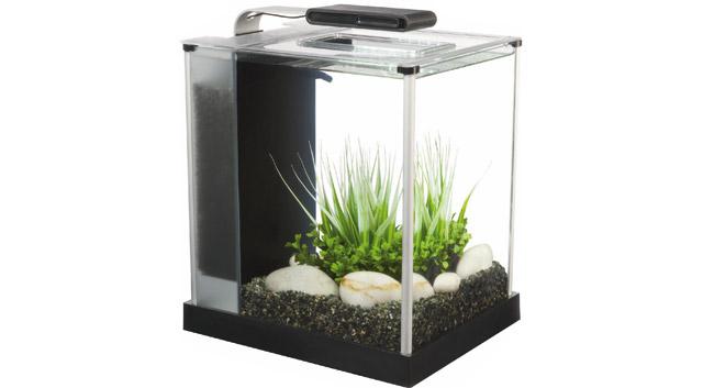 I nano acquari speciali for Acquario per tartarughe grandi