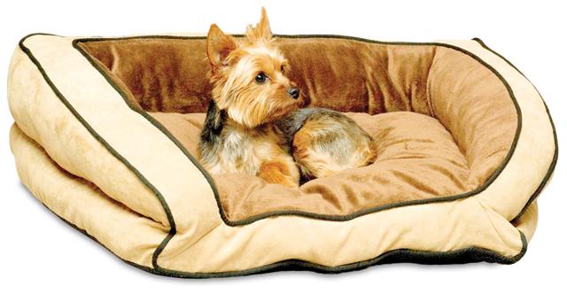 Cuccia per cani quale scegliere cani - Cuccia per cani interno ...