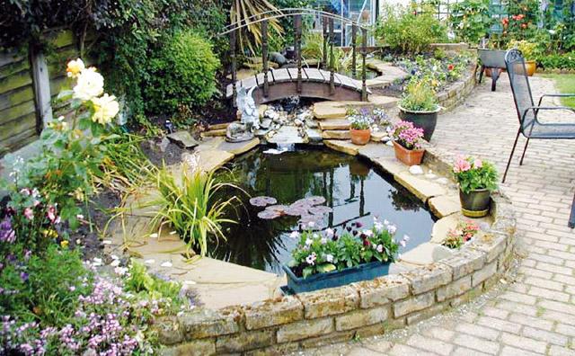 Il bello del giardino acquario for Laghetto tartarughe fai da te