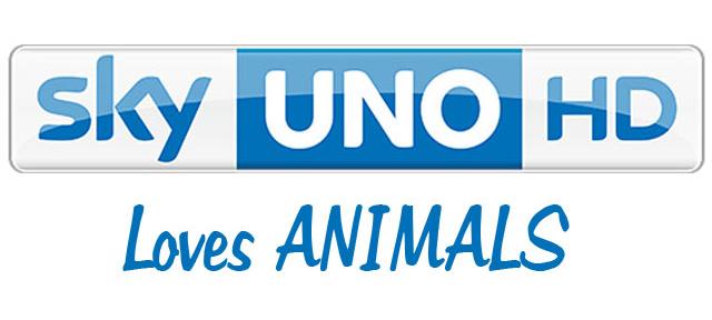 Sky Uno Hd Dedica Un Canale Agli Animali Domestici